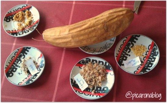 """Una de les imatges que il·lustra una entrada del bloc """"Picarona i el seu hortet"""""""