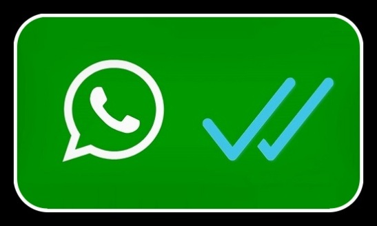 WhatsApp_Doble_Check_Blau